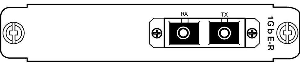 10G-LAN_optical rear