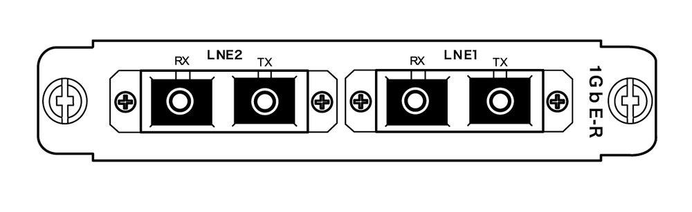 2GbE_line-card-optical_rear